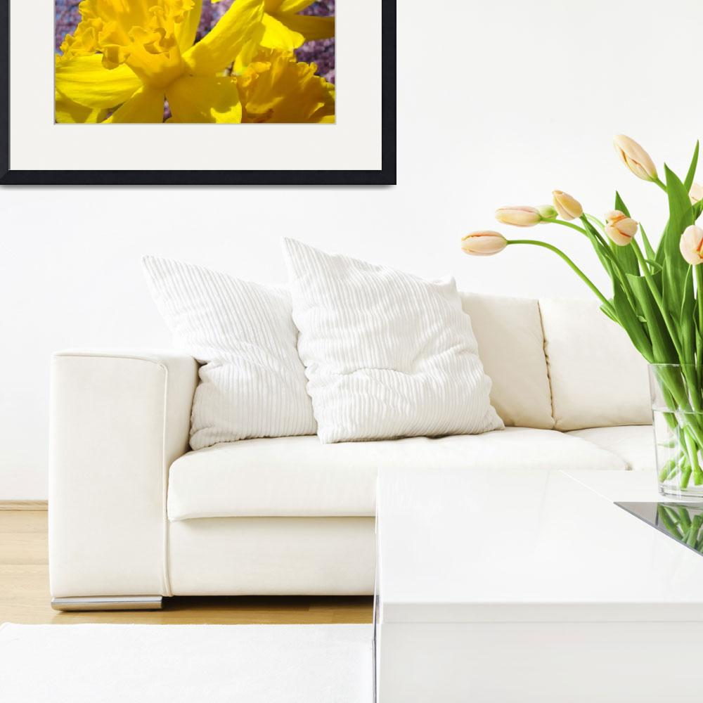 """""""Spring Art Daffodil Flowers Pink Blossoms Fine Art&quot  (2010) by BasleeTroutman"""