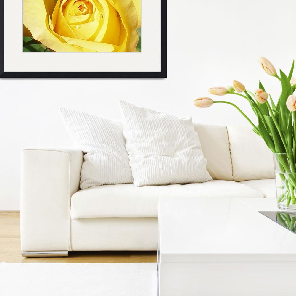 """Yellow Rose&quot  (2008) by ATDesigns"