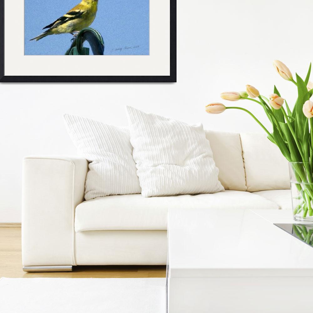 """""""Goldfinch&quot  (2008) by PhotographyofGrace"""