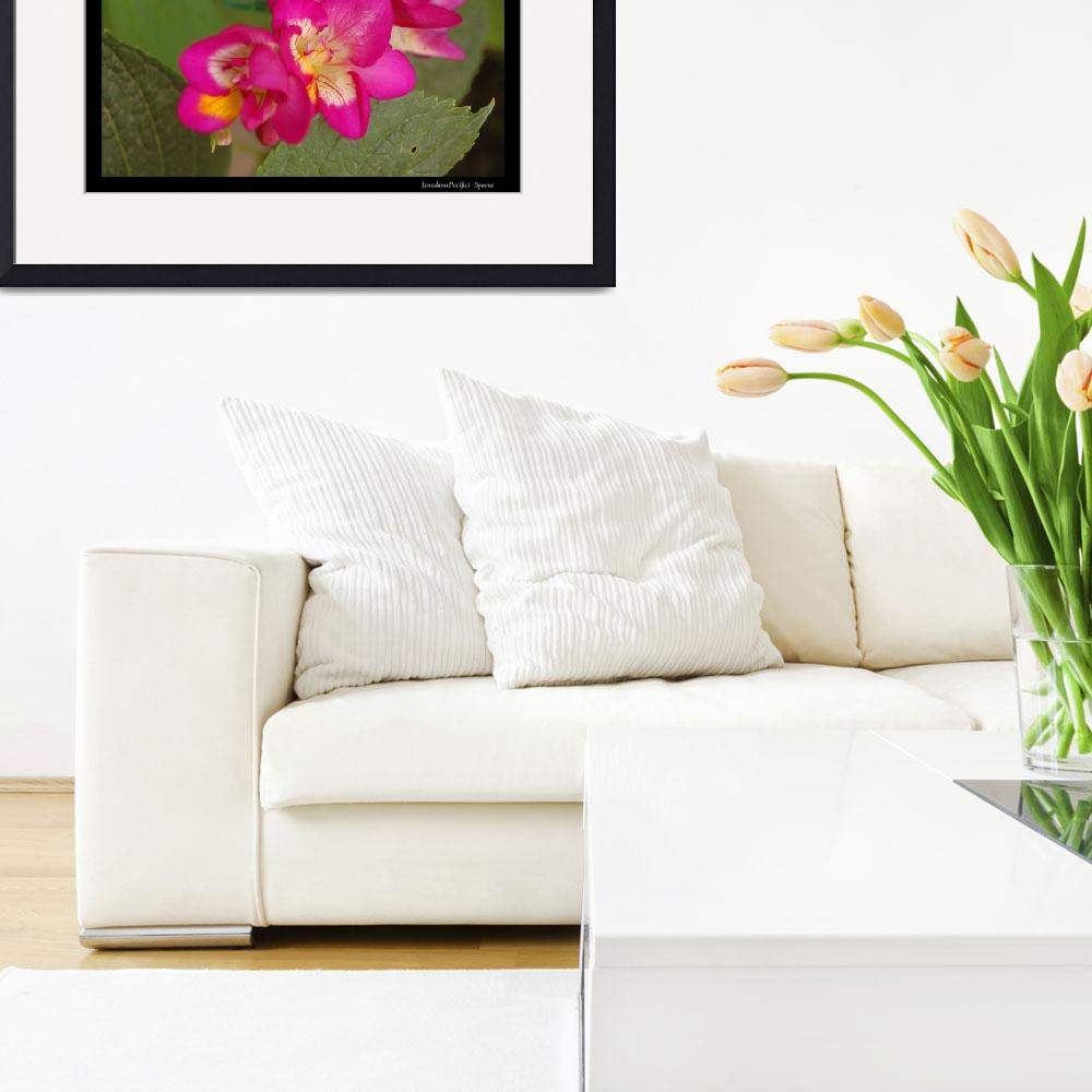 """""""My flowers - Freesia&quot  by Spuma"""