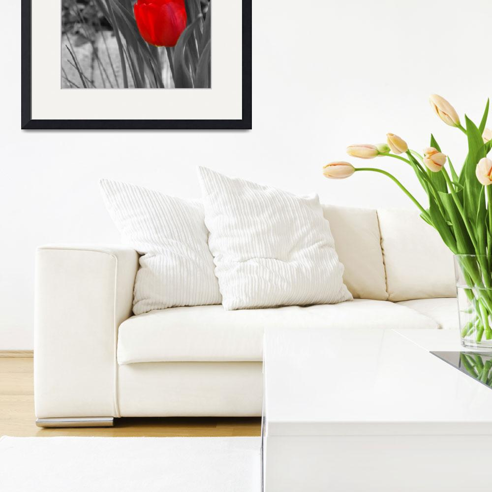 """""""Tulips duo painted&quot  (2008) by LHPhotography"""