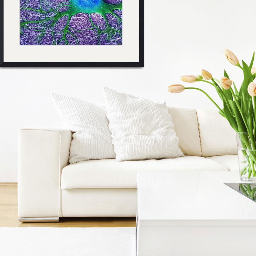 """""""Neural Cell Looking for Friends by Mark McClendon&quot  by ScienceinSociety"""