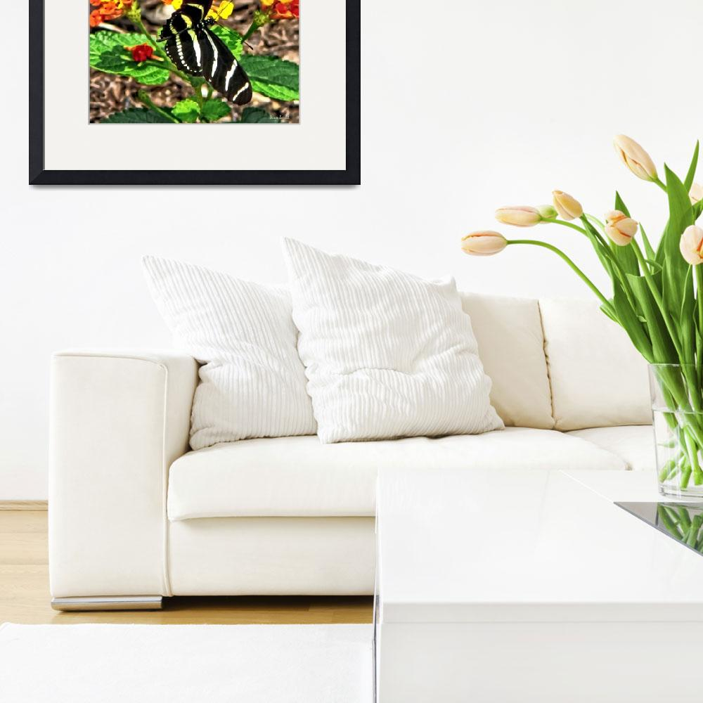 """""""Monarch Butterfly and Zebra Butterfly&quot  by susansartgallery"""