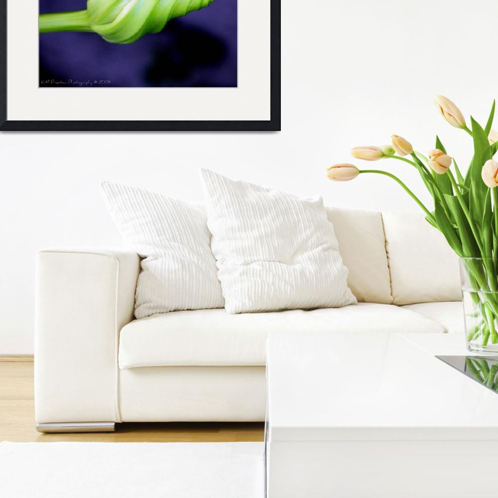 """""""Moonflower bud&quot  by KM_Preston_Photography"""