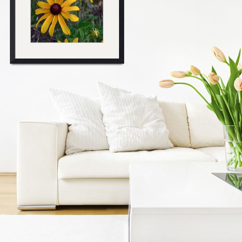 """""""Yellow coneflowers&quot  by NickDavidWright"""