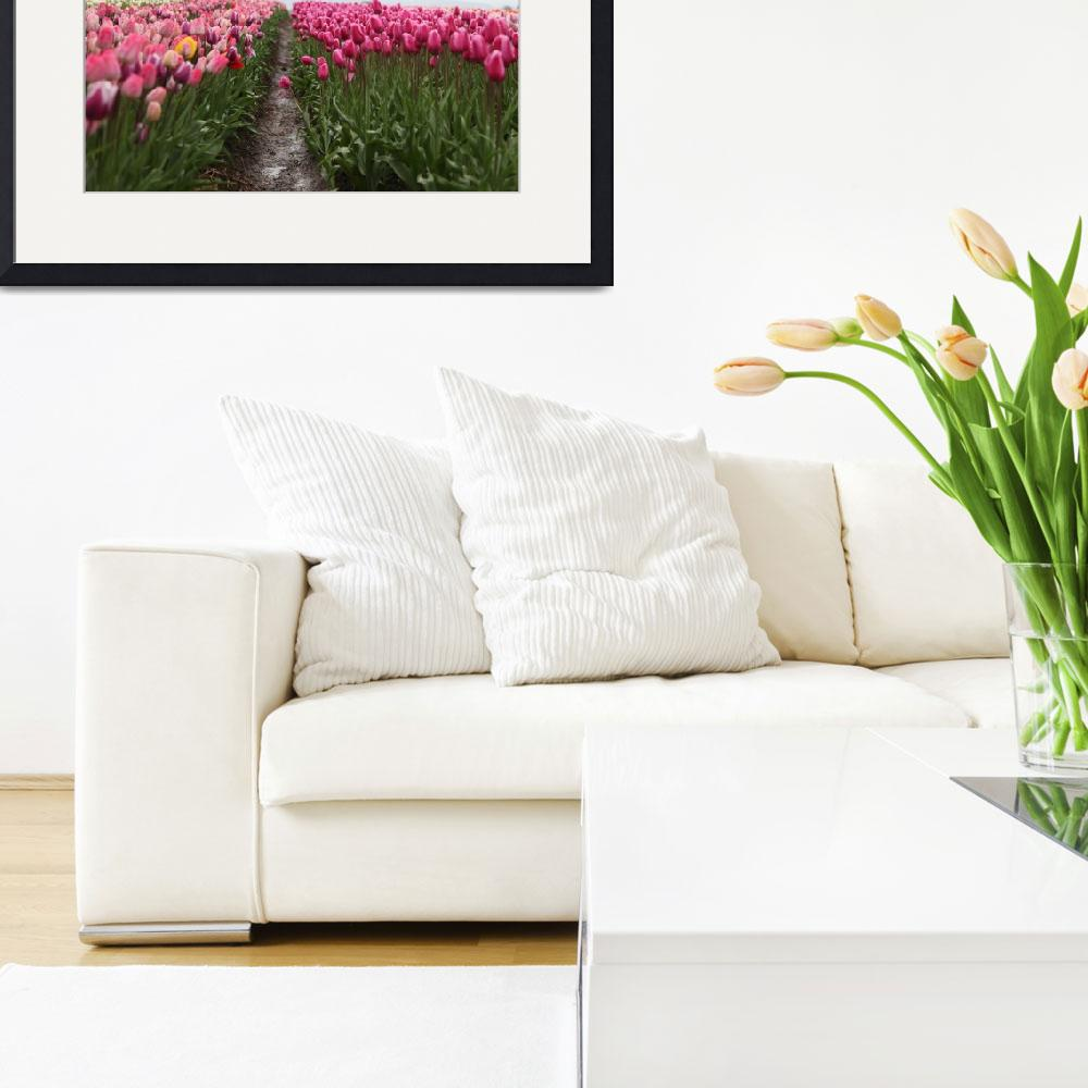 """""""Flower Photo Framed Print&quot  by LifeHack"""