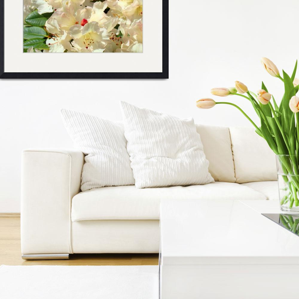 """""""Rhododendron Floral Art Print Rhodies Baslee&quot  (2010) by BasleeTroutman"""