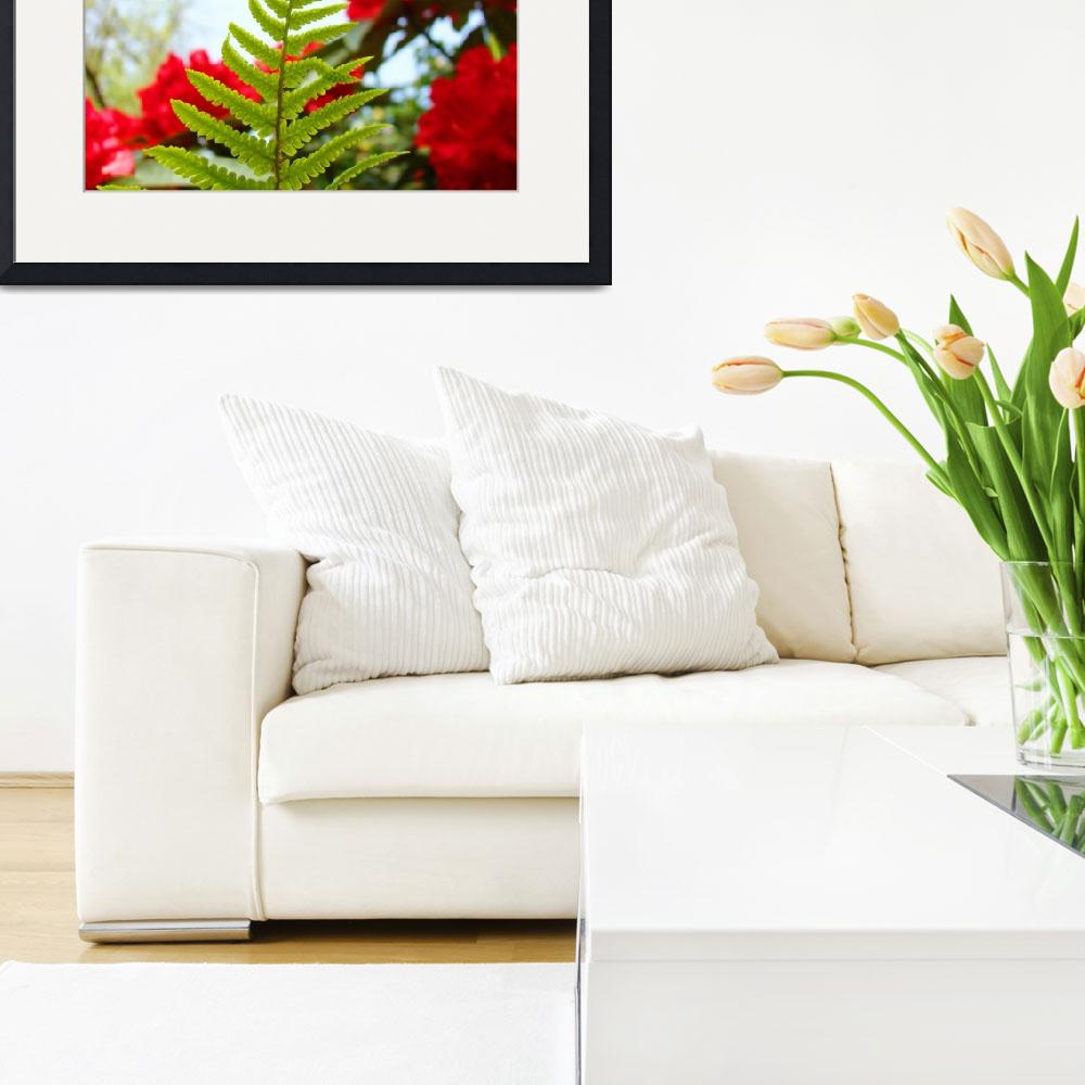 """""""Green Fern art prints Red Rhododendrons Flowers&quot  (2010) by BasleeTroutman"""
