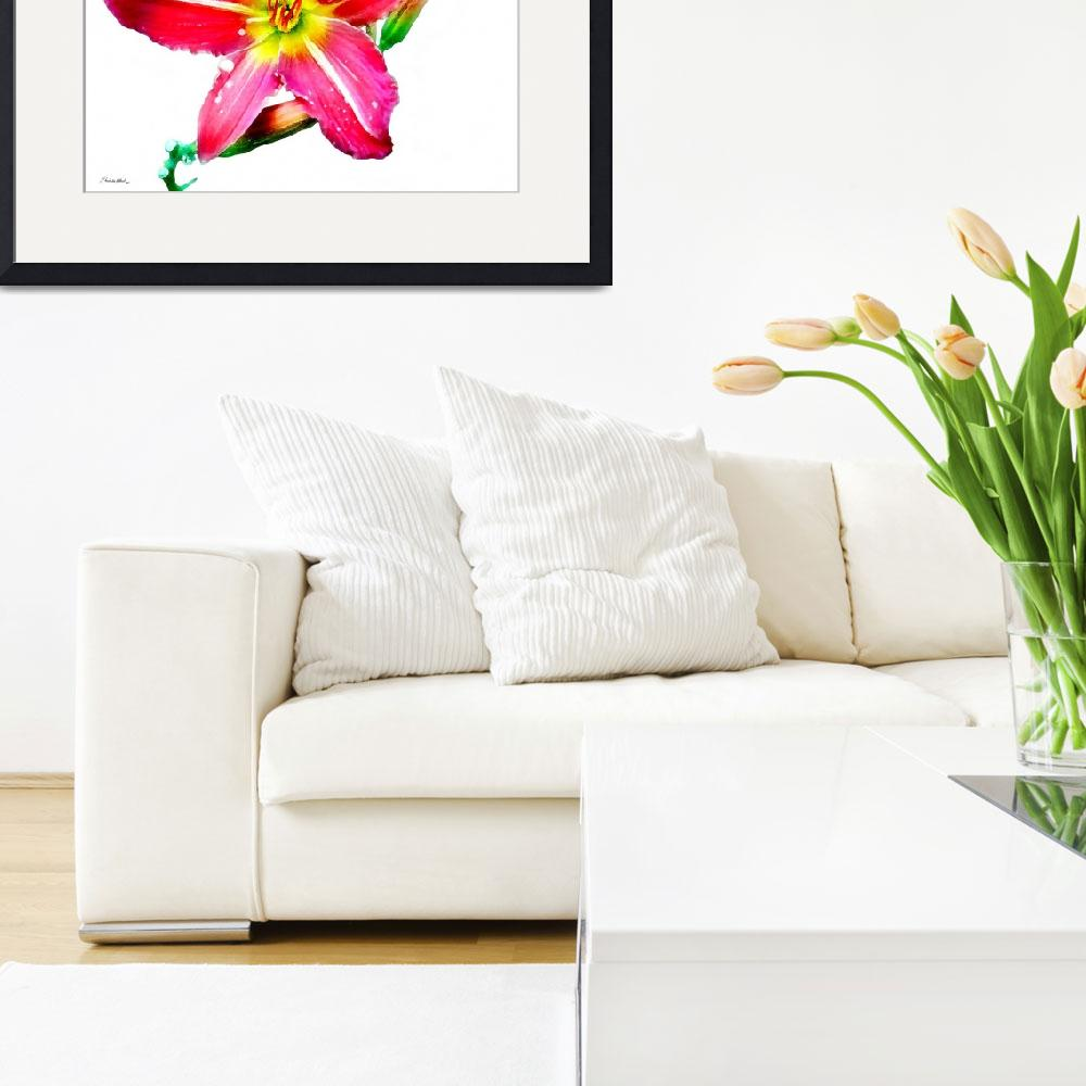 """""""Day Lily No. Two""""  (2007) by MBush1us"""