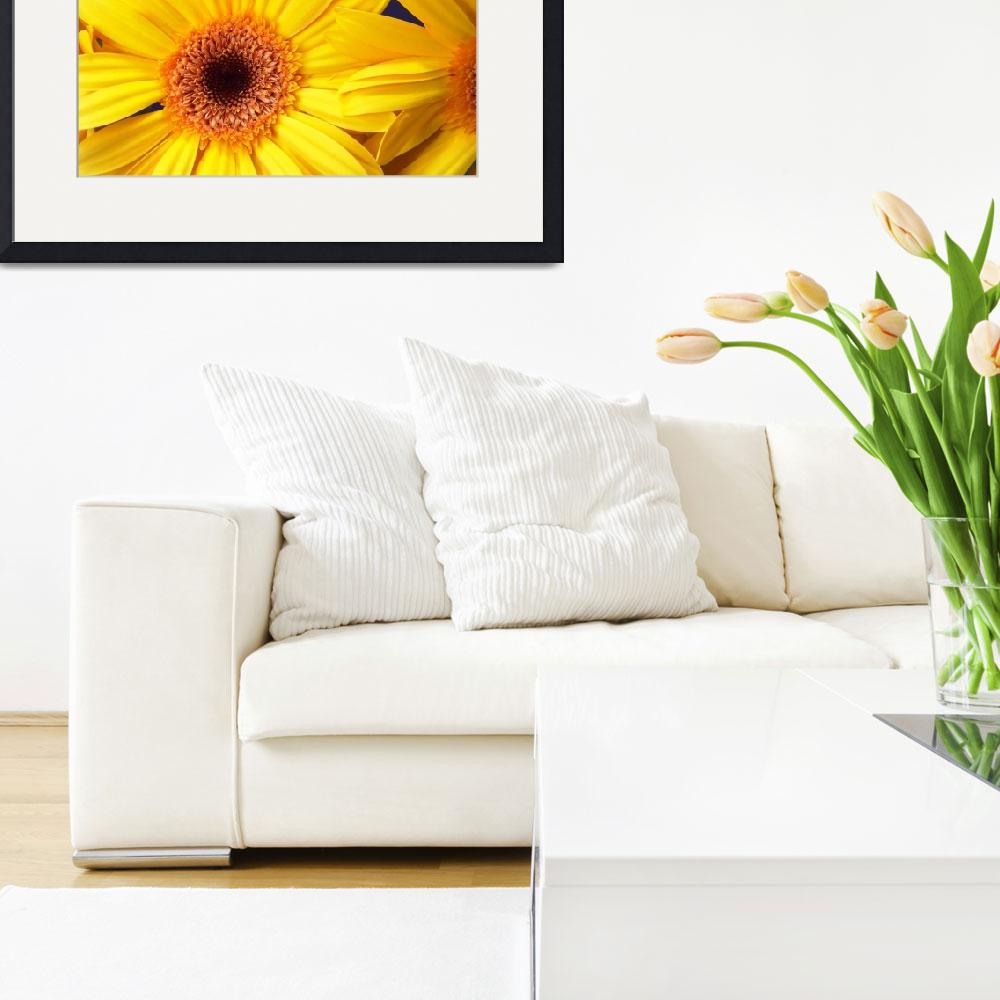 """Yellow Gerbera Daisy Cheerful""  (2006) by Infomages"