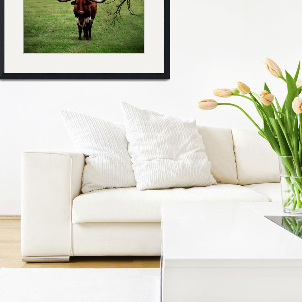 """Photo Texas Longhorn A5010816&quot  (2016) by MasArtStudio"
