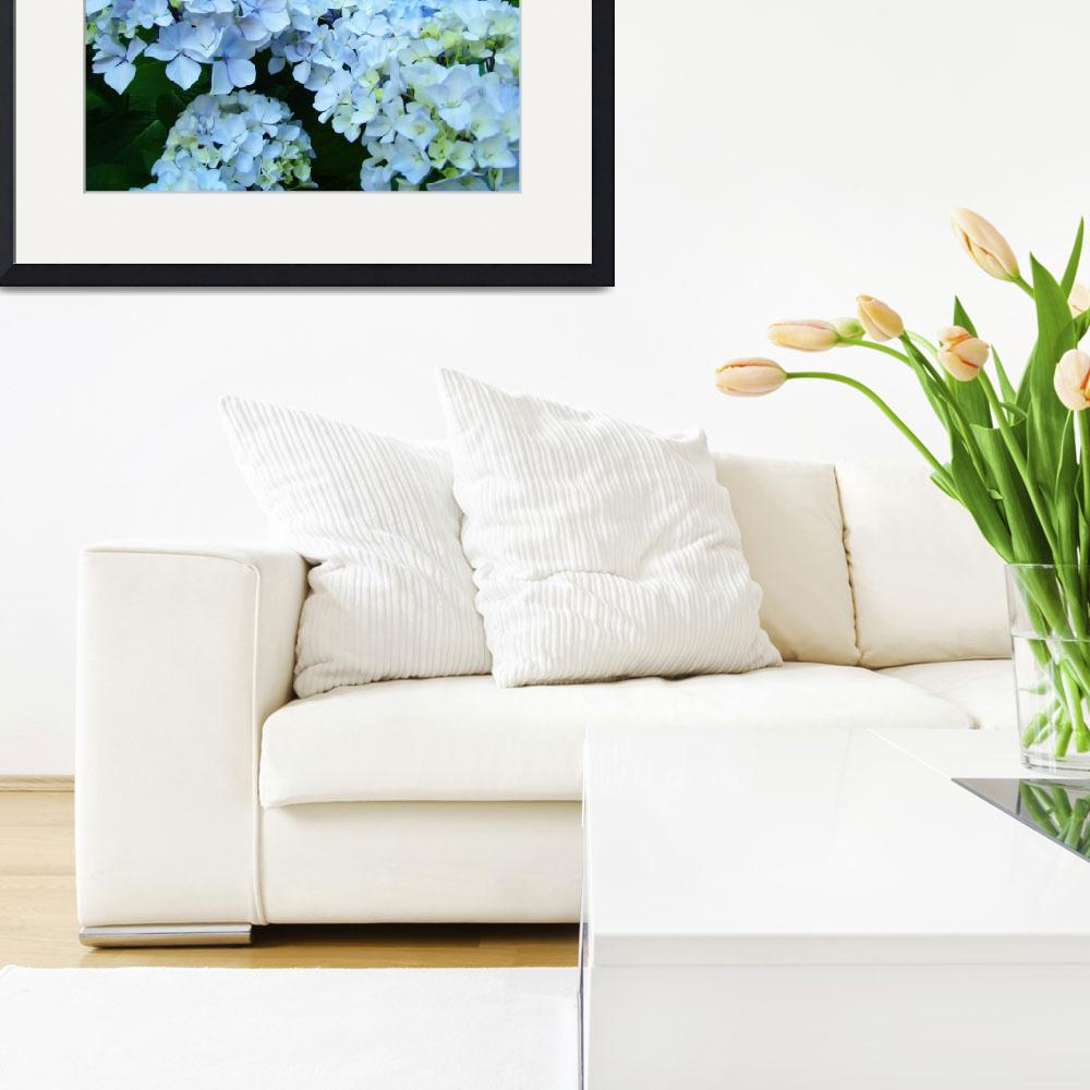 """Landscape Nature art print Blue Hydrangeas Flowers&quot  (2010) by BasleeTroutman"