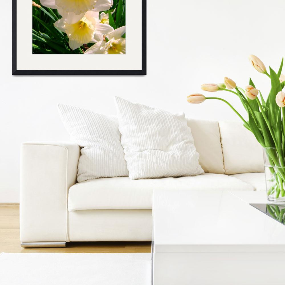 """""""White Daffodils&quot  by Beautyunnoticed"""