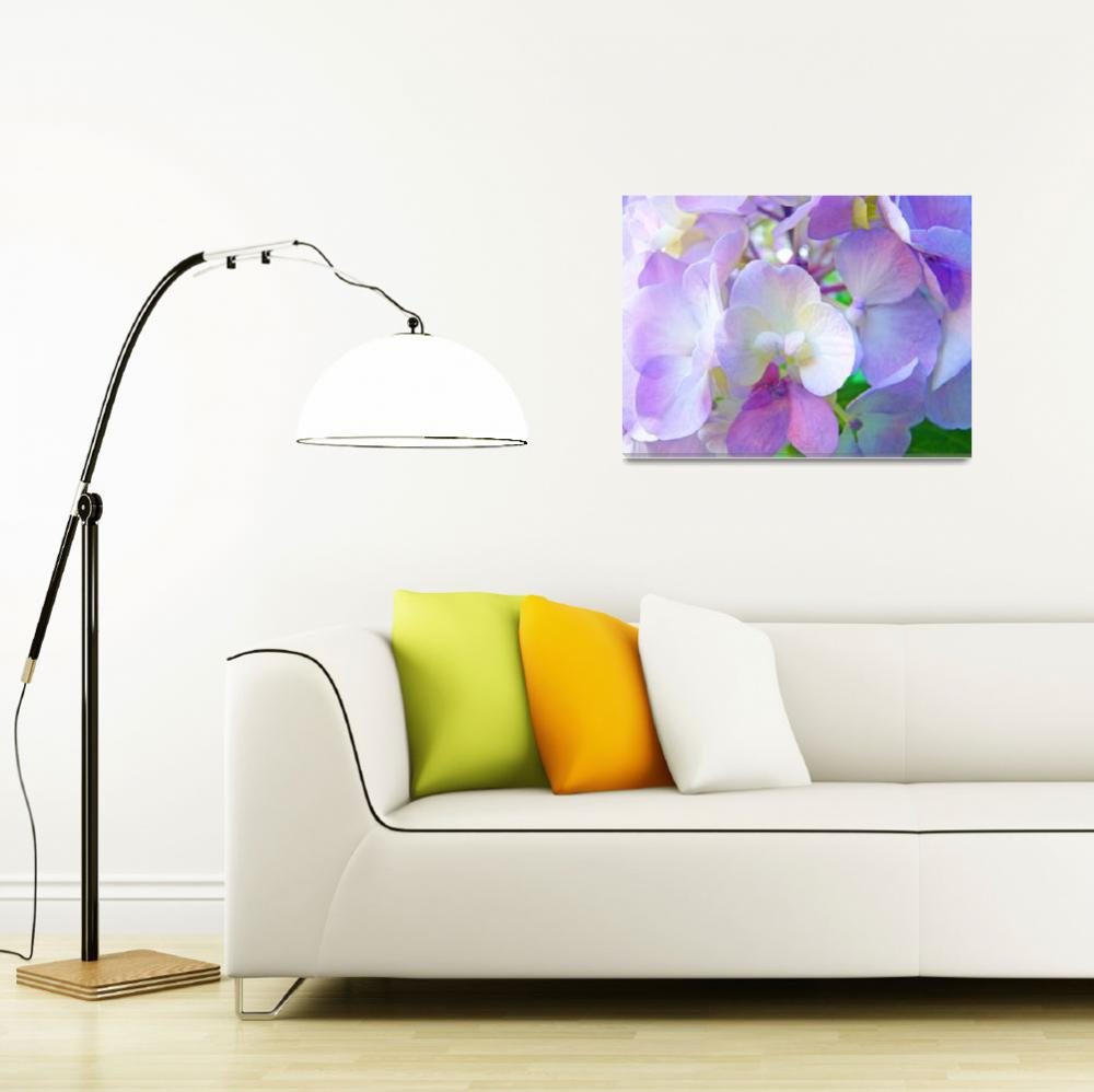 """HYDRANGEA FLORAL Pink Hydrangeas Flowers&quot  (2009) by BasleeTroutman"