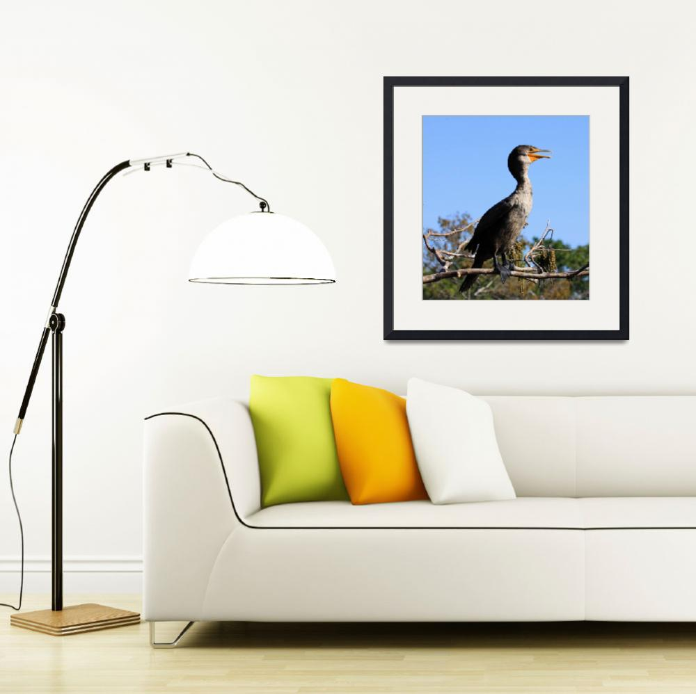 """""""Cormorant Calling for Breakfast&quot  by BABowenphotography"""