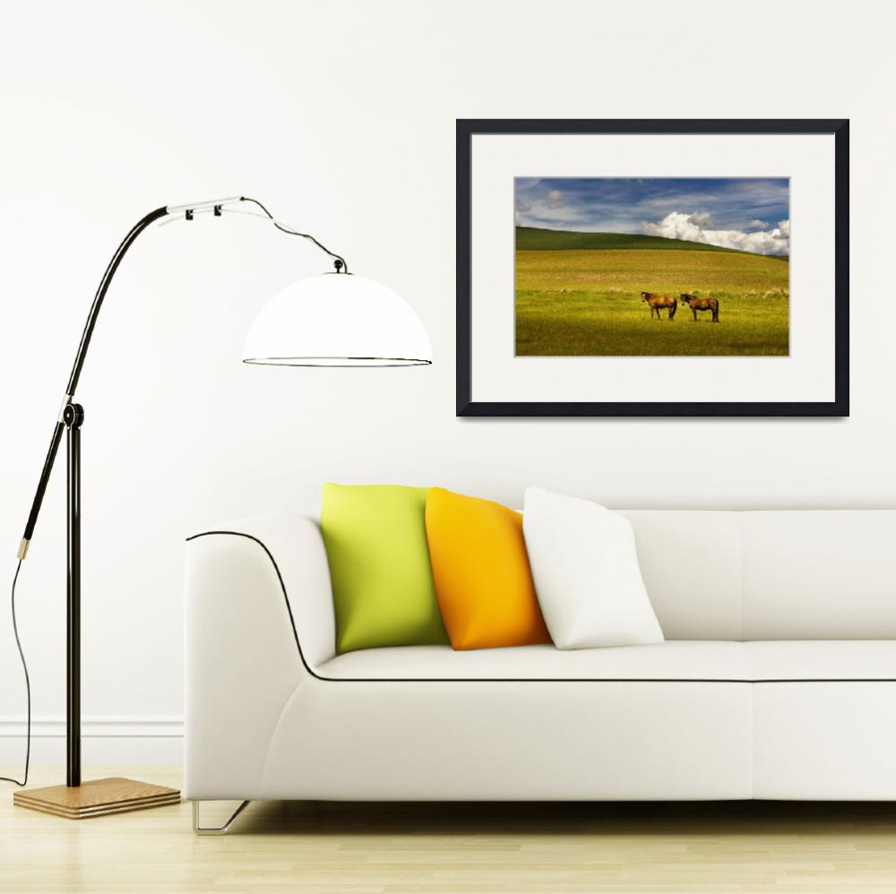 """""""TWO HORSES ON THE PALOUSE&quot  by jody9"""