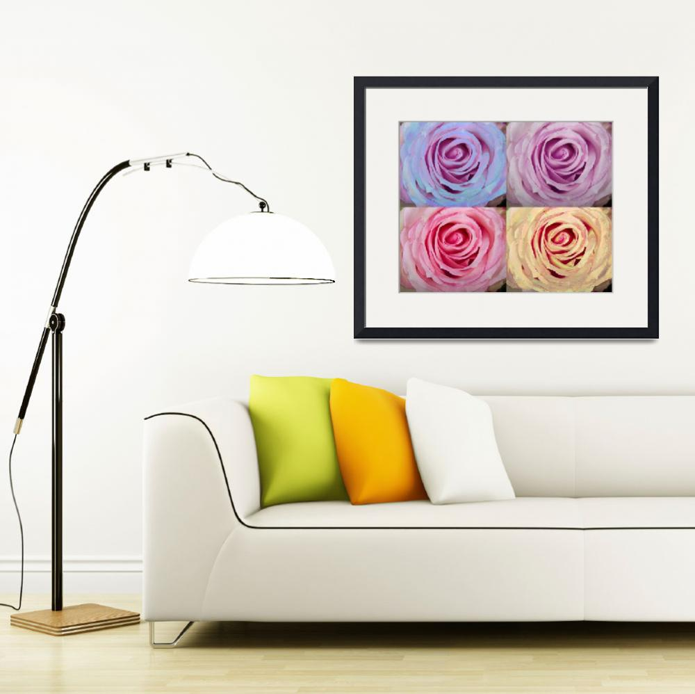 """""""Rose Spiral Colorful Mix&quot  (2012) by lightningman"""