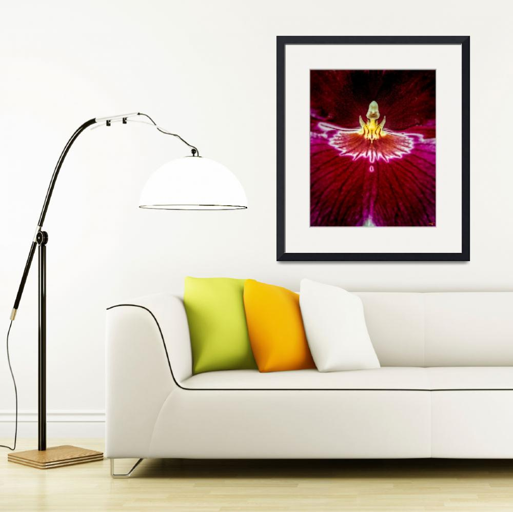 """""""Orchid&quot  (2012) by ChrisLord"""