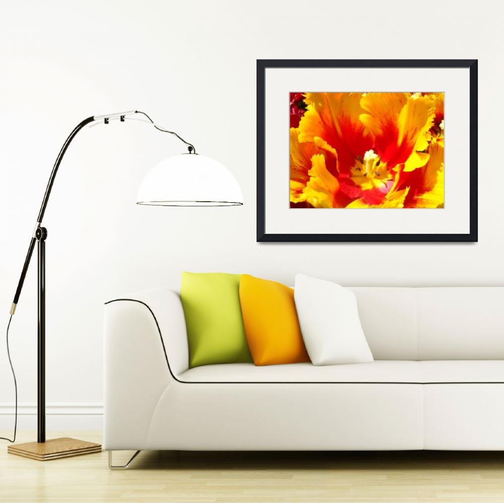 """""""Yellow Red Tulip Flower Floral art prints&quot  (2011) by BasleeTroutman"""