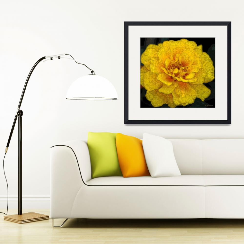 """""""French Marigold&quot  (2013) by AnimalsbyDiDi"""