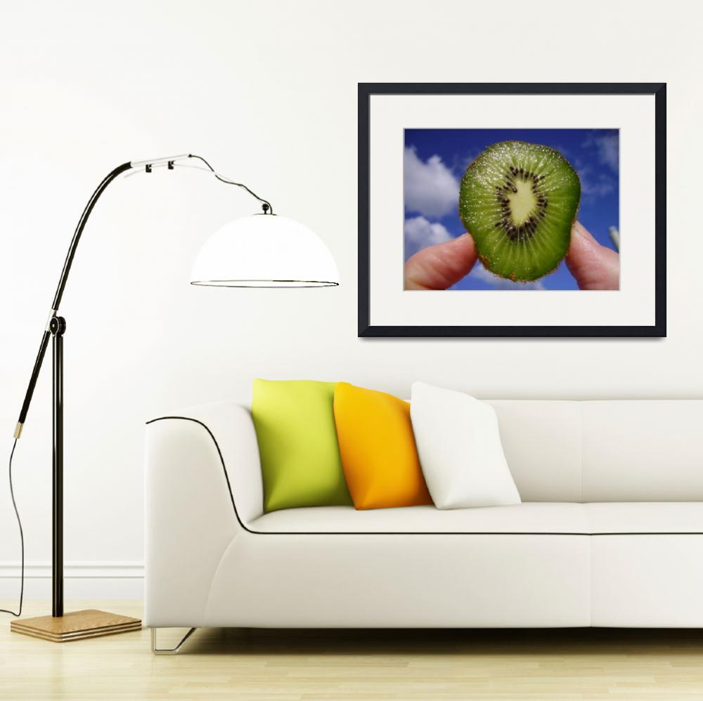 """""""Kiwi in the sky&quot  by VanessaKennedy"""