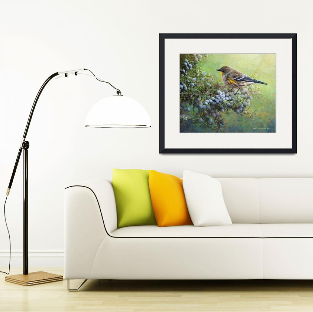 """""""autumn juniper berries and yellow rumped warbler&quot  (2014) by rchristophervest"""