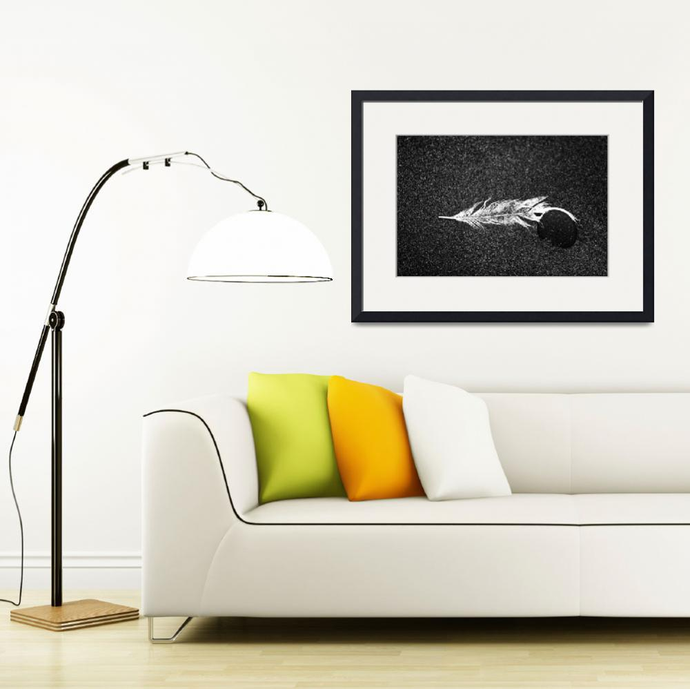"""""""White Feather and Black Stone&quot  (2010) by paulasuterphoto"""