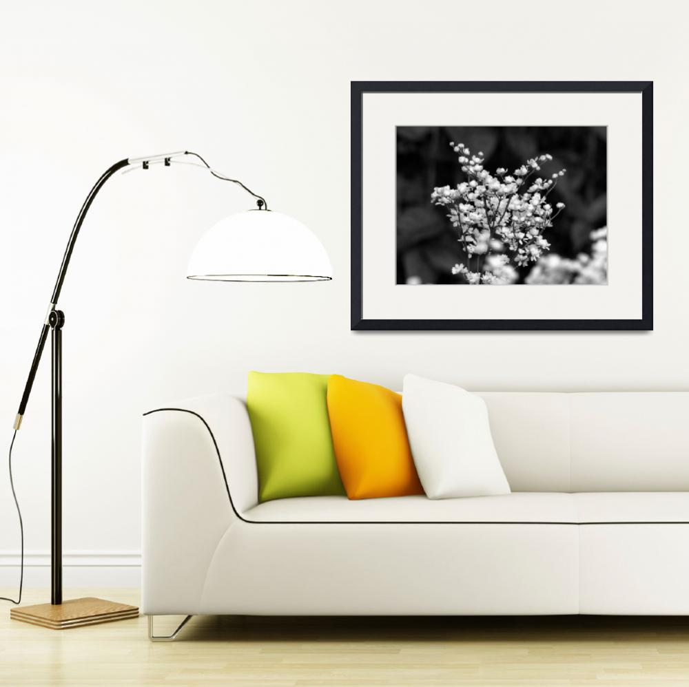 """""""Flower 003aBW Black and White Gray Scale&quot  (2010) by Ricardos"""
