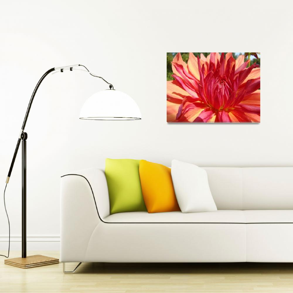 """Dahlia Flower Floral art prints Orange Red Dahlias&quot  (2011) by BasleeTroutman"