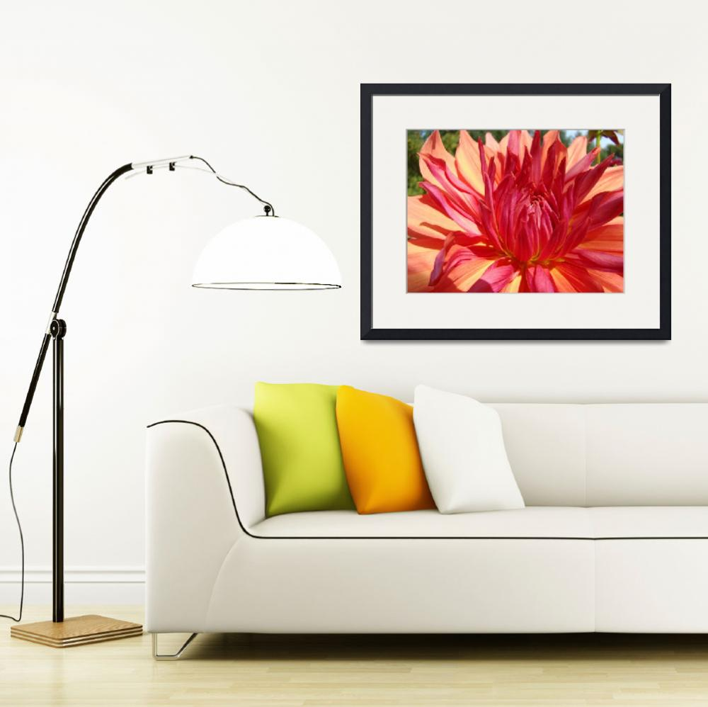 """Dahlia Flower Floral art prints Orange Red Dahlias""  (2011) by BasleeTroutman"