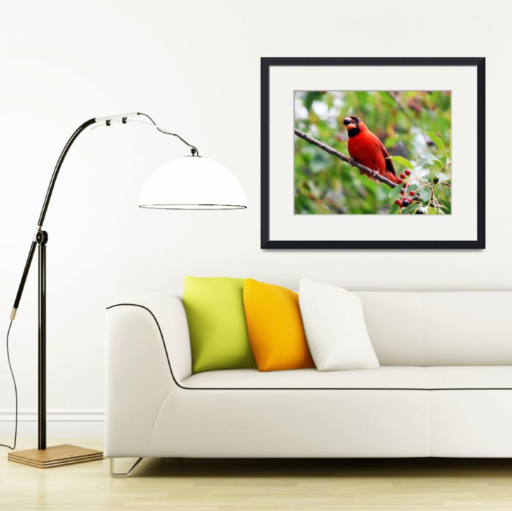 """""""Red Cardinal&quot  (2015) by artbynature"""