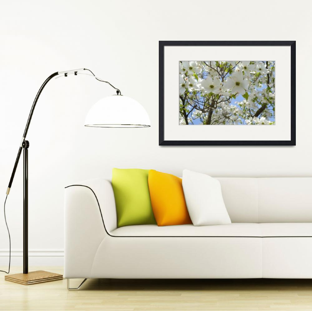 """""""Dogwood Tree&quot  (2011) by PatriciaSanders"""