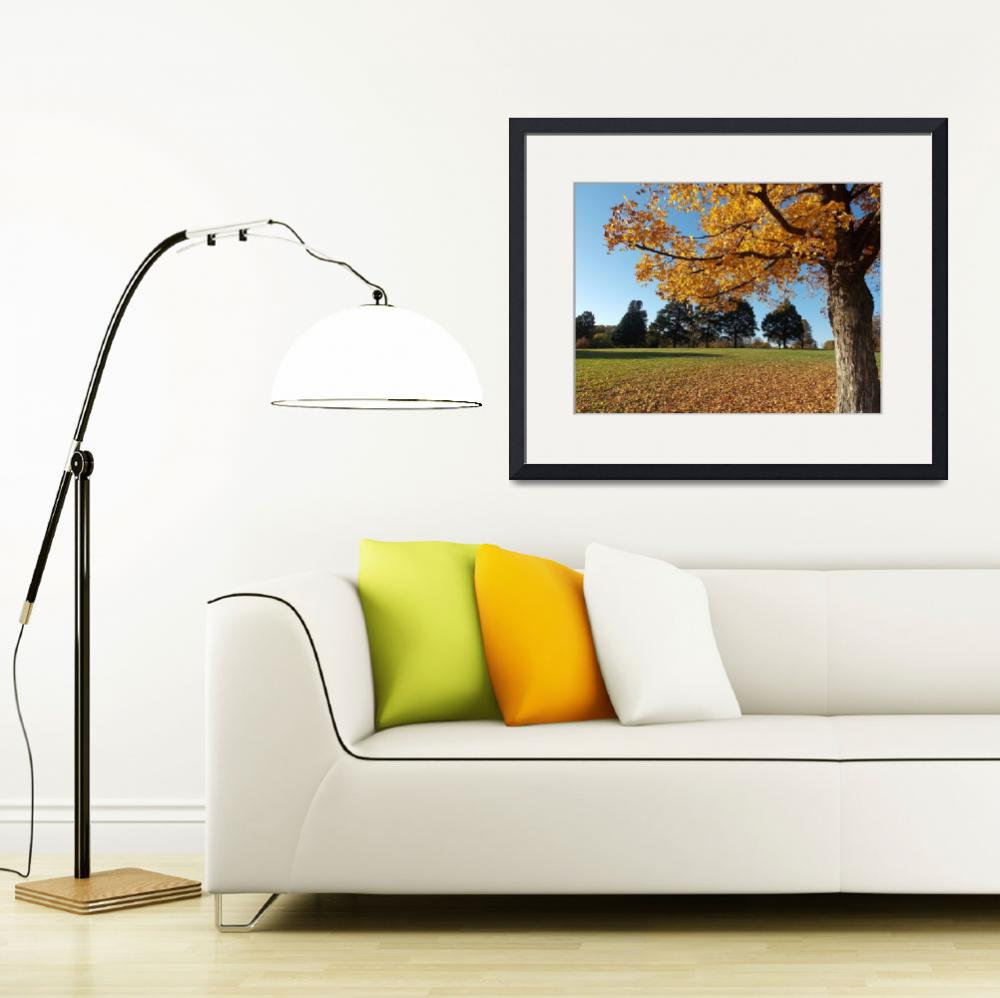 """""""Autumn in Omaha&quot  (2014) by SaraOmaha"""