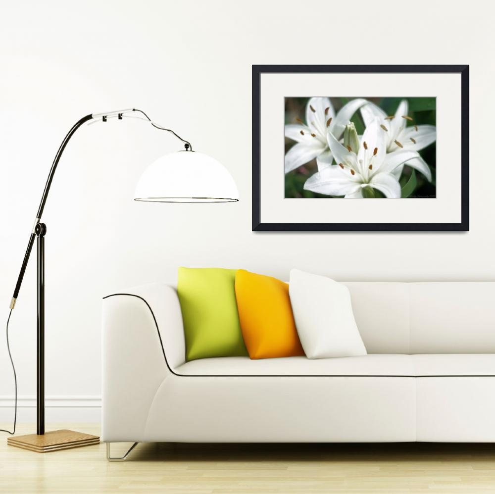 """""""Trio Of Lillies&quot  by mrsmade"""