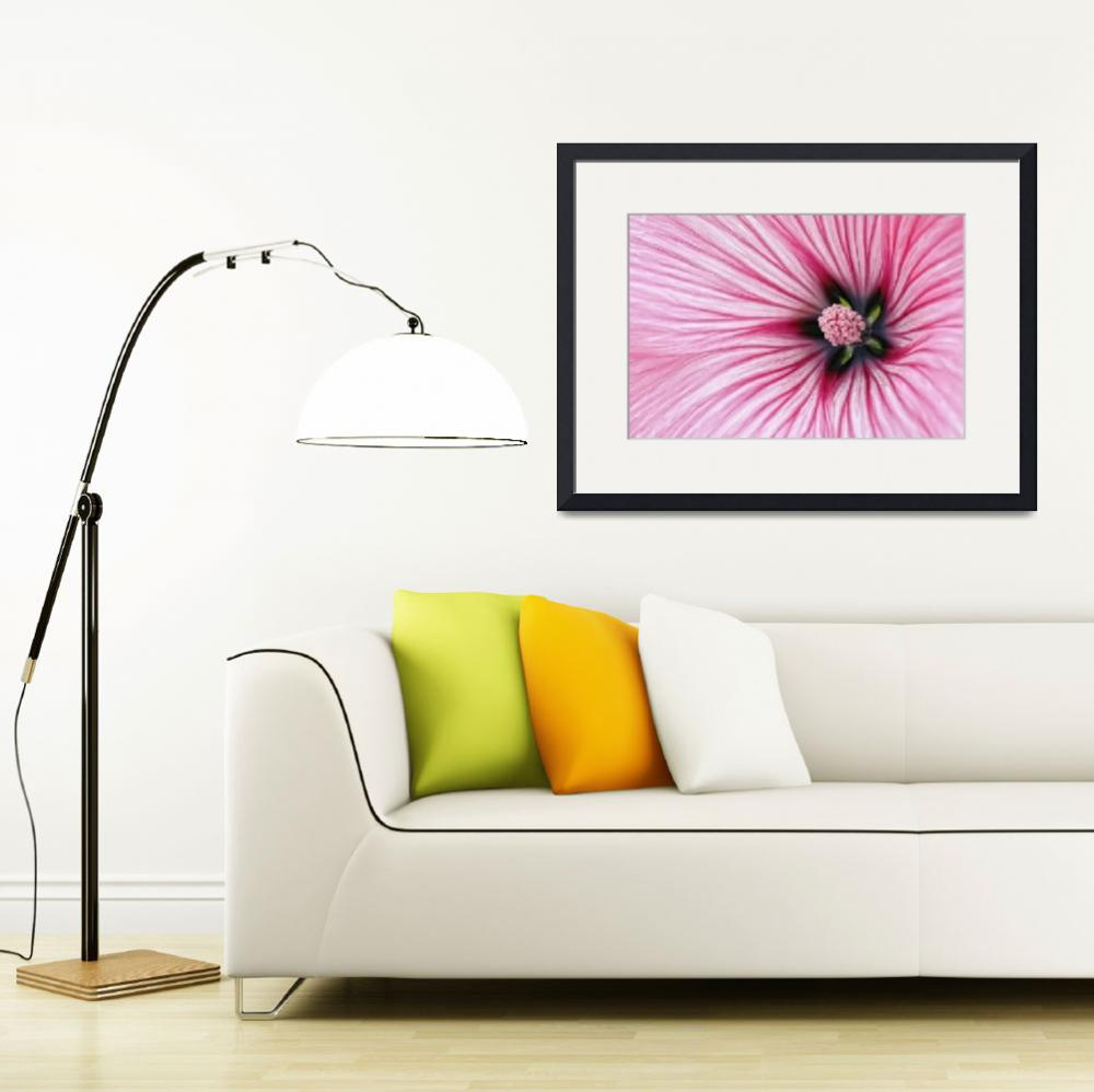 """""""Pink stripes flower&quot  (2009) by CoraNiele"""