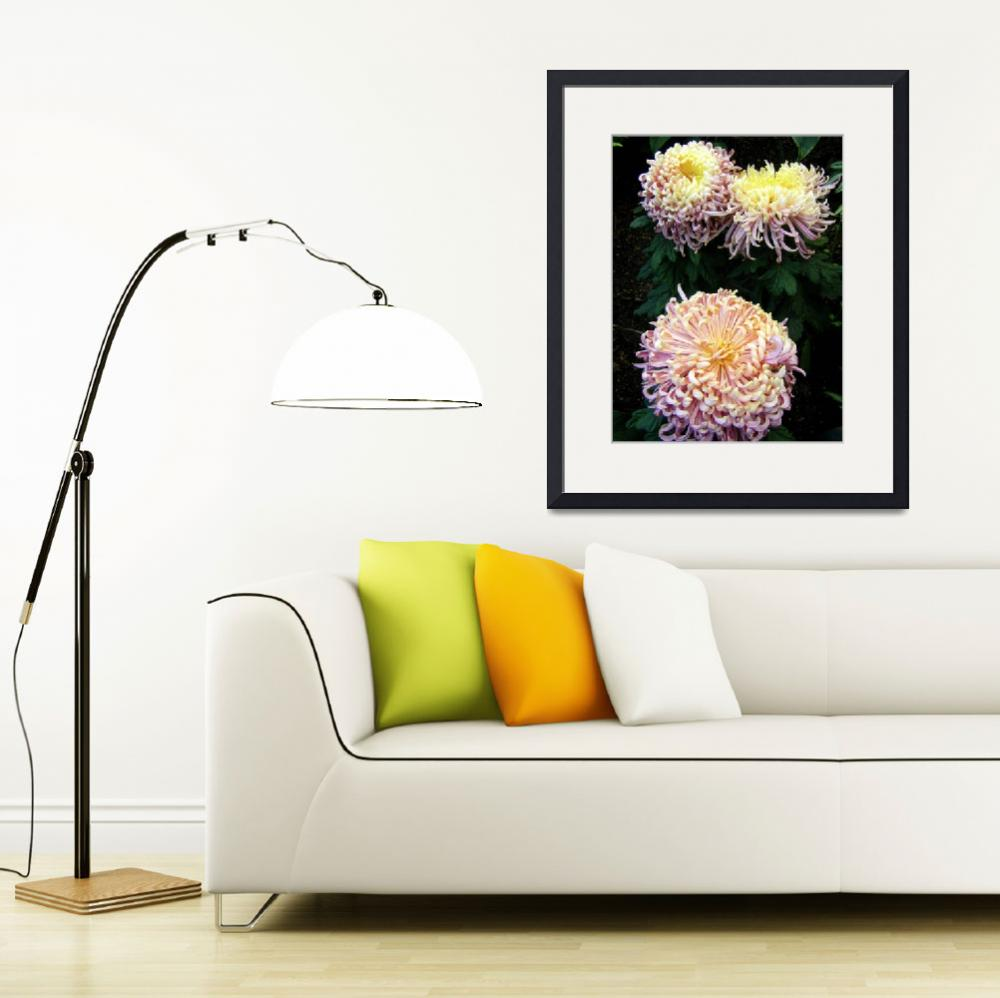 """pretty flowers art print&quot  (2010) by derekmccrea"
