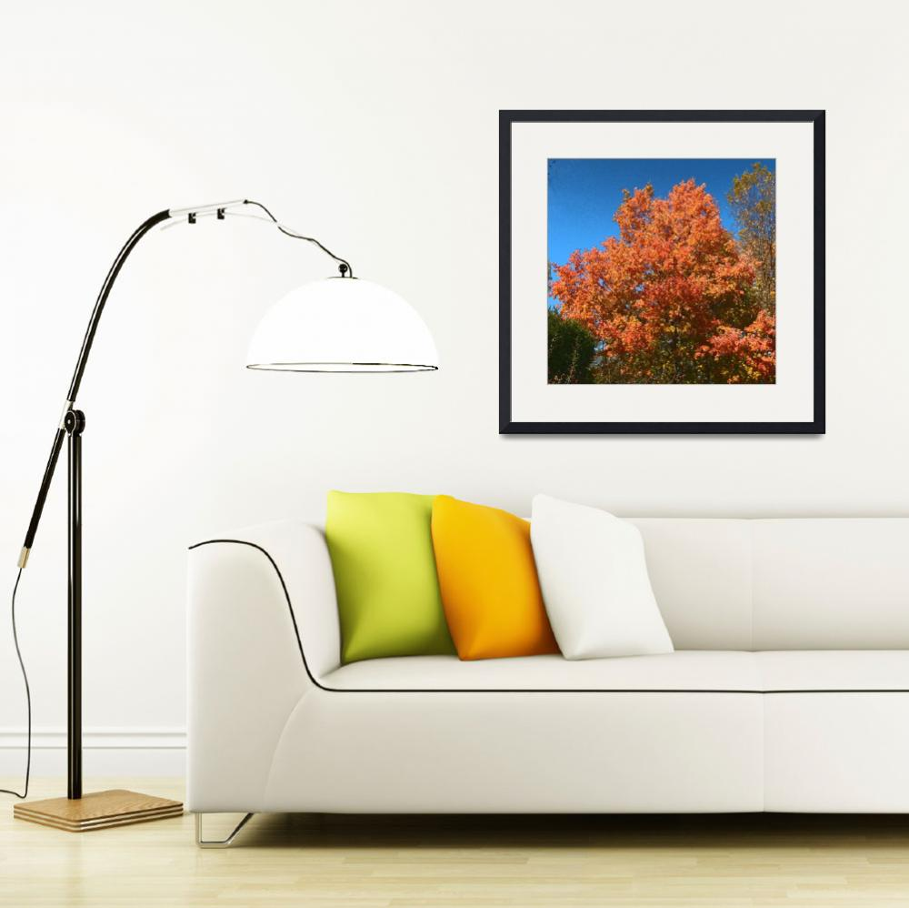"""""""Fall Nature&quot  by Candi"""