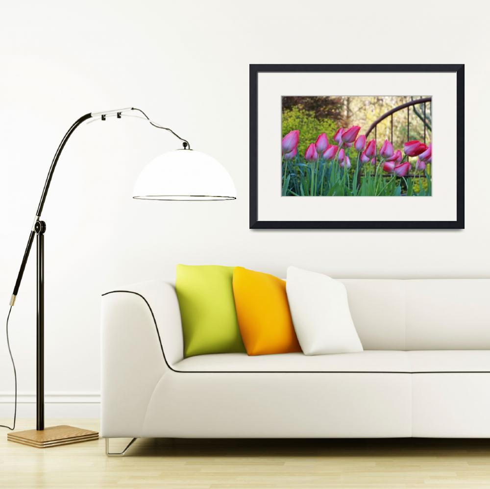 """""""Pink White Tulips Flowers Garden Art Prints&quot  (2014) by BasleeTroutman"""