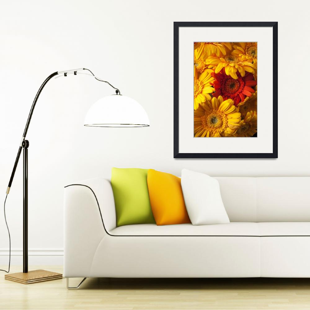 """Orange gerbera among yellow ones&quot  (2012) by photogarry"