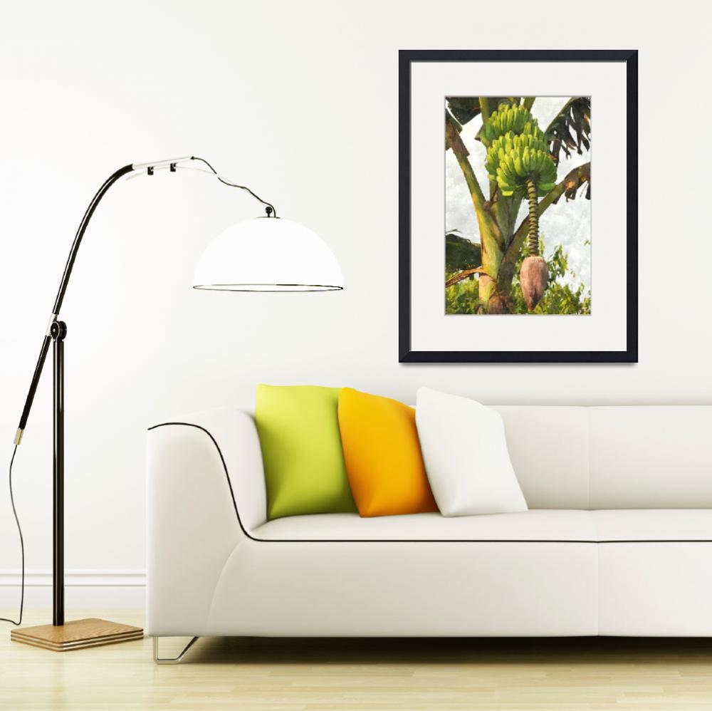 """""""Banana Trees With Fruits And Flower In Lush Tropic&quot  (2013) by lanjee"""