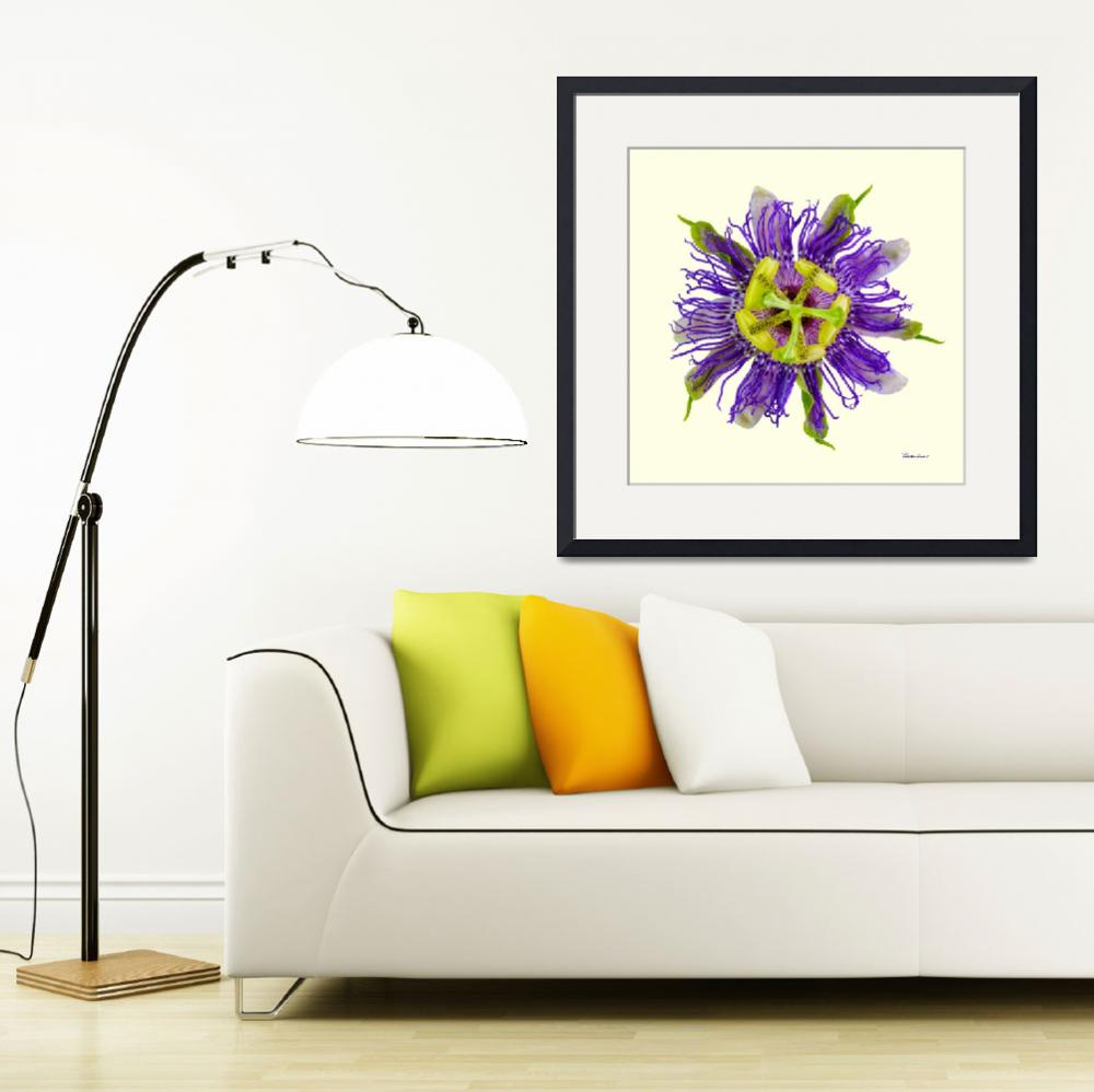 """Yellow Green and Violet Passion Flower 50674Y&quot  (2018) by Ricardos"