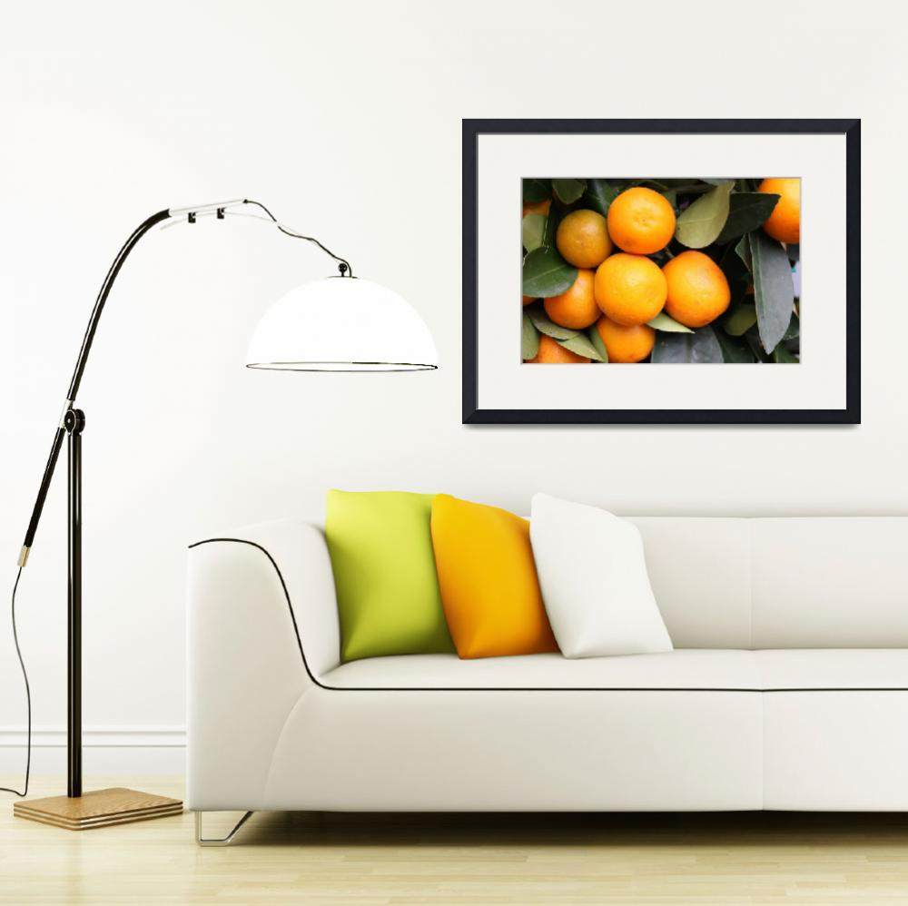 """oranges&quot  (2008) by yvonneayoub"