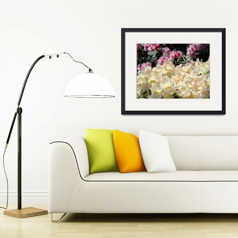 """""""Rhododendron Flowers Garden art Prints Yellow&quot  (2010) by BasleeTroutman"""