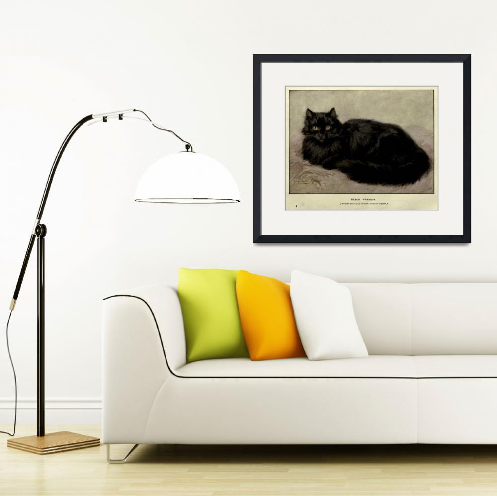"""Vintage Painting of a Black Cat (1903)""  by Alleycatshirts"