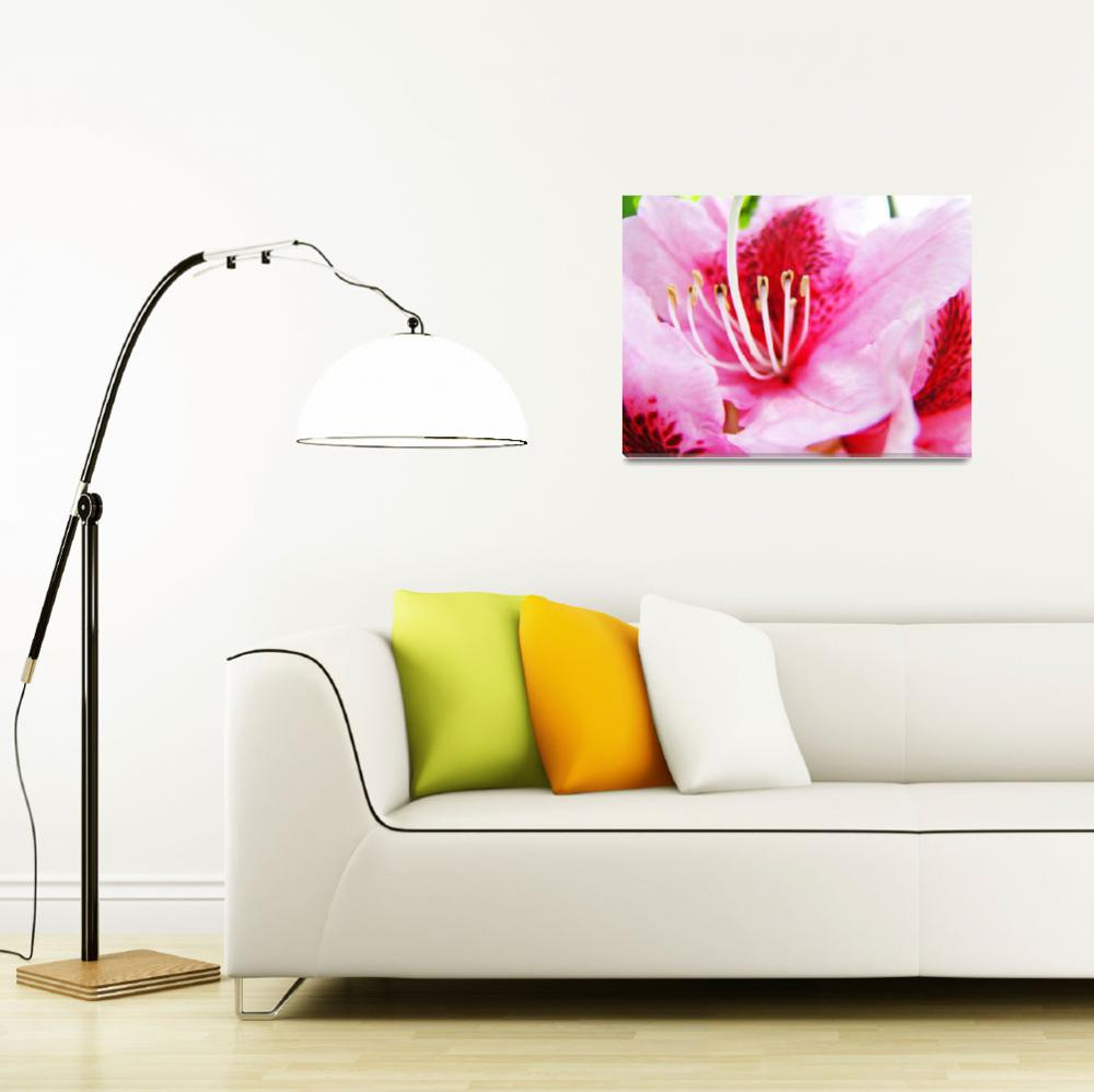 """PINK RHODODENDRUMS Flowers Art Prints Flower&quot  (2009) by BasleeTroutman"