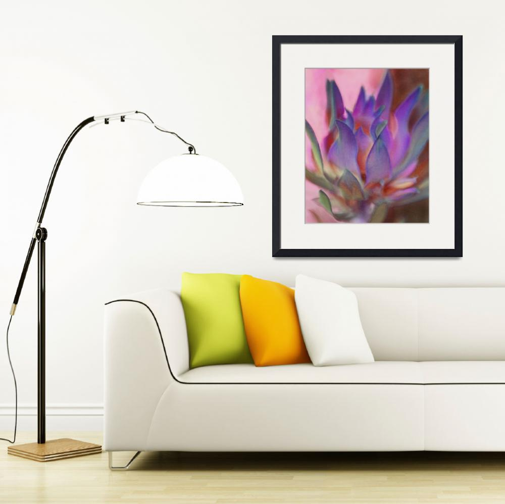 """""""Flaming Protea in Pink and Purple""""  (2011) by SherylKaras"""