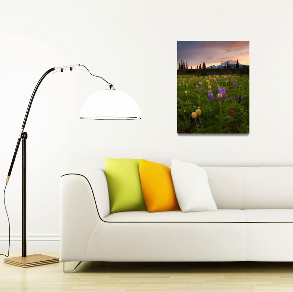 """Red Sky Meadow&quot  (2009) by Dawsonimages"