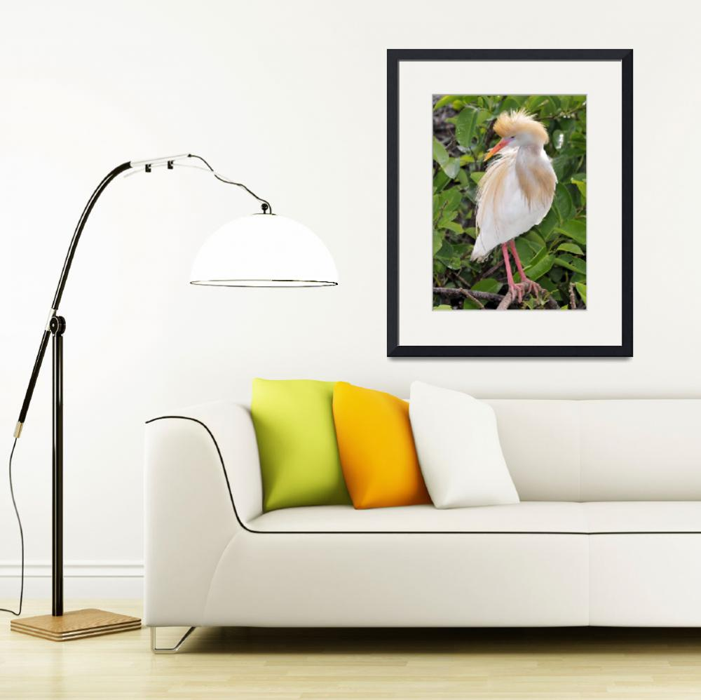 """""""Egret in Bloom&quot  (2013) by doncon402"""