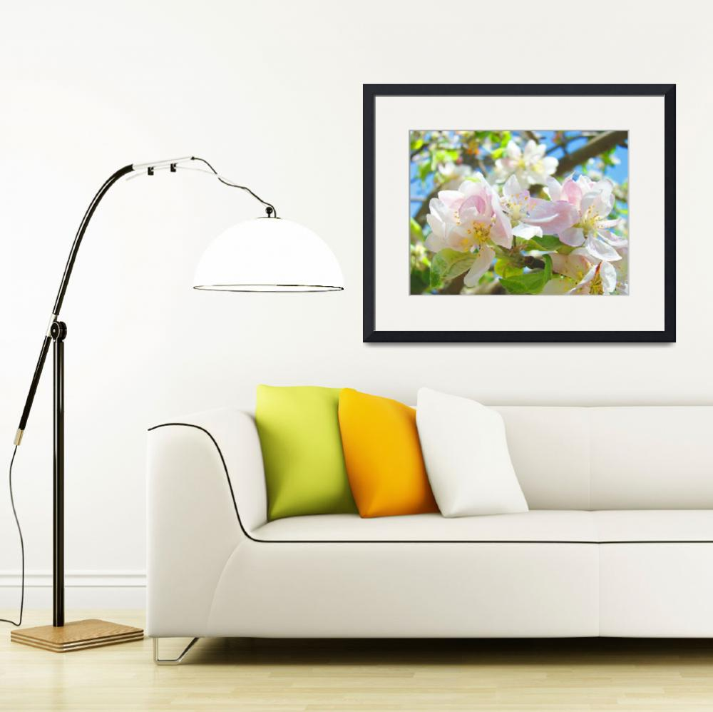 """""""Spring Apple Blossoms Flowers Art Prints Trees&quot  (2014) by BasleeTroutman"""
