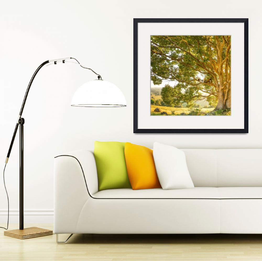 """Landscape Framed Photo Print&quot  by eddiealfaro"
